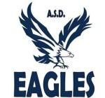 Volley Eagles logo